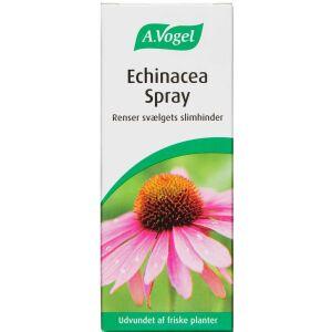 Køb Echinacea spray 30 ml online hos apotekeren.dk