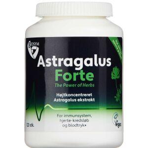 Køb Astragalus Forte kapsler 120 stk. online hos apotekeren.dk