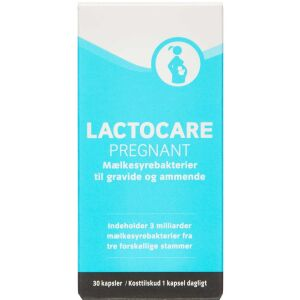 Køb LACTOCARE PREGNANT KAPS online hos apotekeren.dk