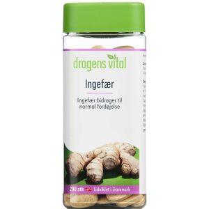 Køb DROGENS VITAL INGEFÆR online hos apotekeren.dk