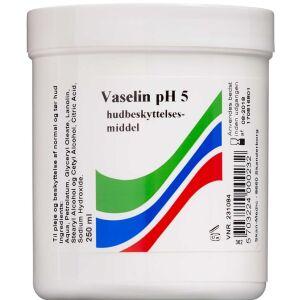 Køb Vaselin pH 5 hudbeskyttelsesmiddel 250 ml online hos apotekeren.dk