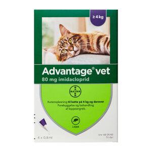 Køb Advantage Vet til katte 4+ kg 4 x 0,8ml online hos apotekeren.dk